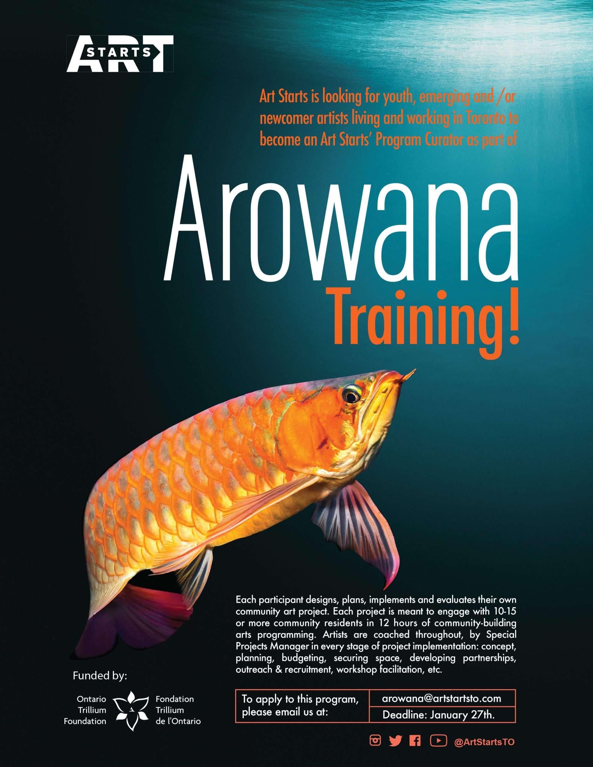 ART-AROWANA