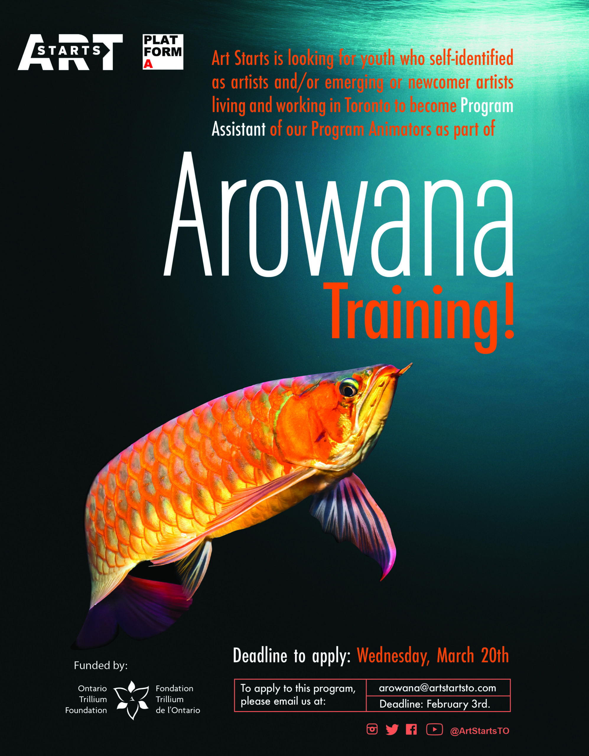 AROWANA PA final No text